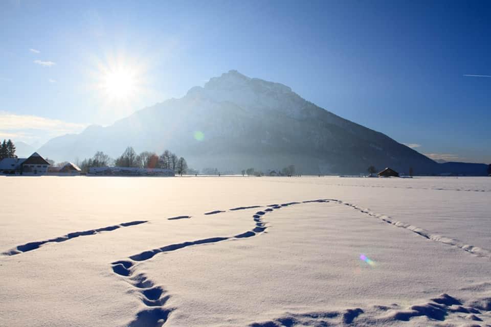 Friesachers Aniferhof (Anif) HolidayCheck (Salzburger Land